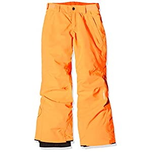 O'Neill Jungen Anvil Snow Pants