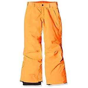 O'Neill Jungen Anvil Snow Pants