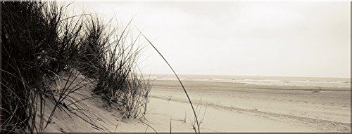 artissimo, Glasbild, 80x30cm, AG1929A, Dünenlandschaft, Strand und Meer, Bild aus Glas, Moderne Wanddekoration aus Glas, Wandbild Wohnzimmer modern