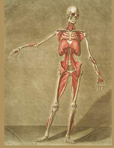 Anatomy Journal With Vintage Cover: Gift Journal For Doctors, Nurses, Medical Students and Hospital Workers | 120 Pages College Ruled 8.5x11 | Gift ... And Pre-Med | Skeleton And Anatomy Notebook