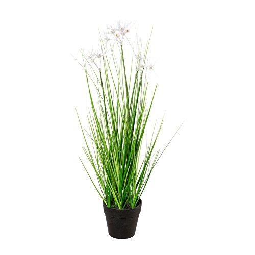 Kunstpflanze FEDERGRAS ca 43 cm, Grasbusch mit 3 Blütenständen. Getopft.