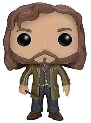Harry Potter Sirius Black Vinyl Figure 16 Figurine de collection