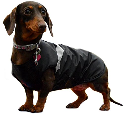 DACHSHUND Waterproof Dog Coat. Length 12″ / 30 cm. NEW & IMPROVED FIT