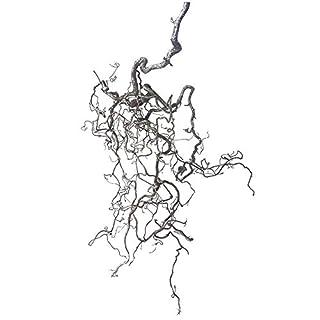 Korkenzieherast (ca. 80 cm lang; 40 cm breit): 1 echter AST zur Dekoration - frischer Korkenzieherast - Frühlingsdeko-AST - Wanddeko