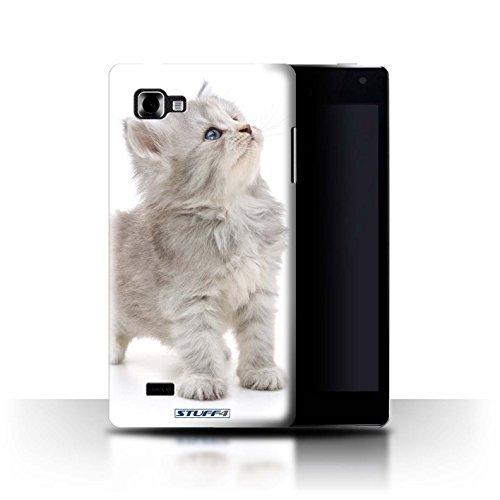 Stuff4® Hülle/Hülle für LG Optimus 4X HD P880 / Neugieriges Kätzchen Muster/Süße Kätzchen Kollektion -