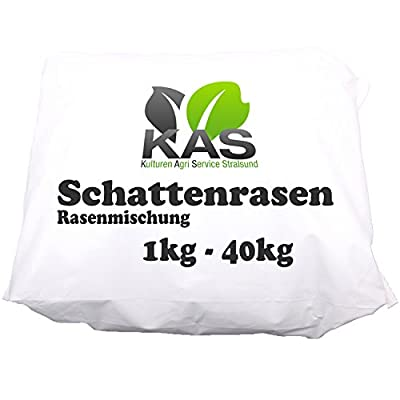 KAS - Schattenrasen Rasenmischung Rasensaat von KAS-Stralsund - Du und dein Garten