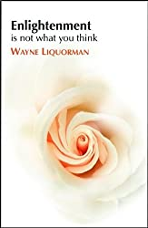 Enlightenment is Not What You Think by Wayne Liquorman (2009-06-01)