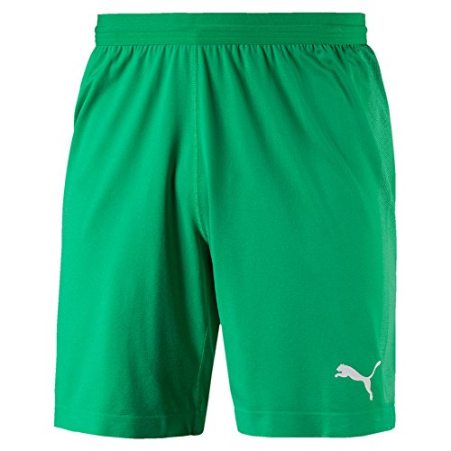 Puma Herren Final Evoknit GK Shorts Hose, Bright Green/White, L (Gk Shorts)