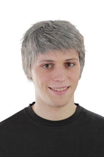 Foxxeo 10124 | Kurzhaarperücke Männer Herren Sky du Mont grau Perücke Kurzhaar Kurz Haar (Kurze Perücke Haarteil)