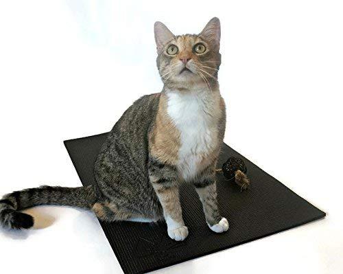 Feline Yogi Alfombrilla de gato con Catnip Cat Toy. Cat Scratching Post, cama, Actividad Alfombra de juegos (Negro)