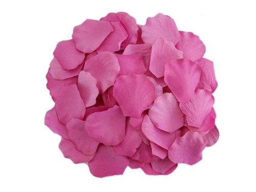 tter Hochzeit Dekorationen Bulk Supplies Fuchsia (Bulk-rosenblätter)