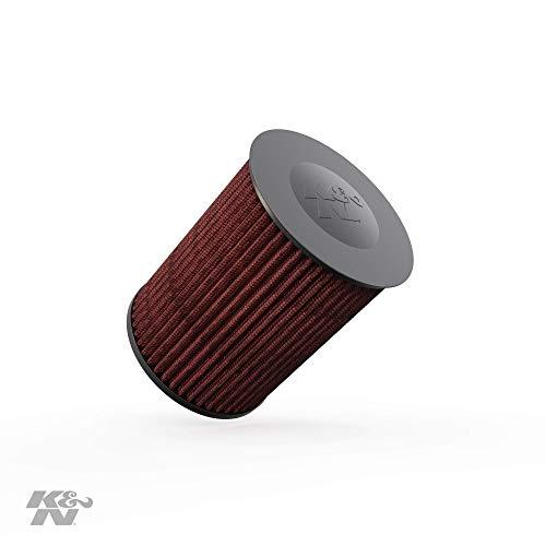 K&N E-2993 Filtri Aria Sostitutivi Auto, Lavabile e Riutilizzab