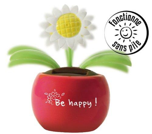 Flor dansante A la energía solar 12 x 17 cm, diseño de la energía solar PW A, no necesita pilas