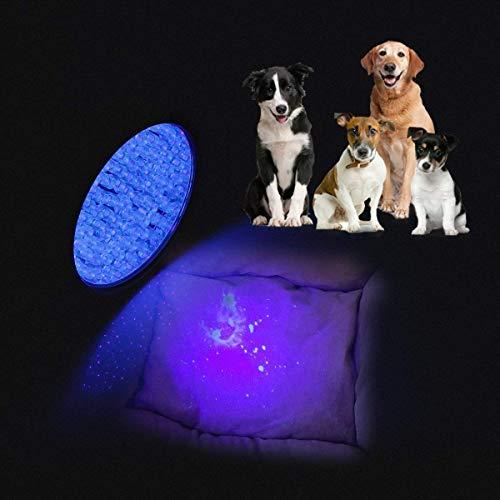 Zoom IMG-3 weinas blacklight ultra violet flashlight