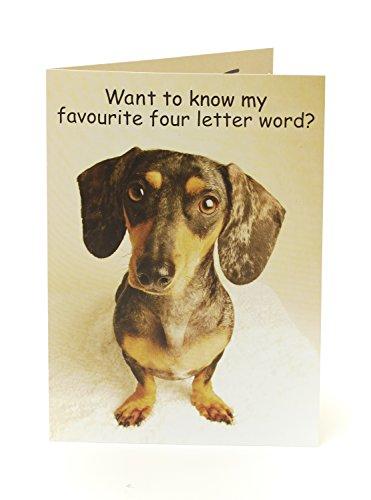 Funny Humorvolle Hund Geburtstagskarte–Kuchen