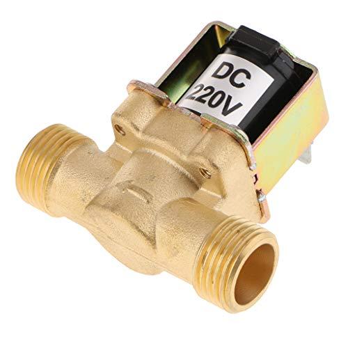 Homyl 220V DC 2,44'' elektrisches Magnetventil gereinigtes Wasserventil - 220v Dc Wasser