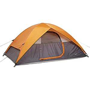 amazonbasics water resistant  unisex outdoor dome tent