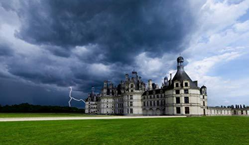 OKOUNOKO Puzzles Rätsel Für Erwachsene 1000 Teile Chateau De Chambord Hölzern Zusammenbauen Dekoration Für Das Heimenspiel Entdecken Sie Kreativität Und Problemlösung Block Chateau