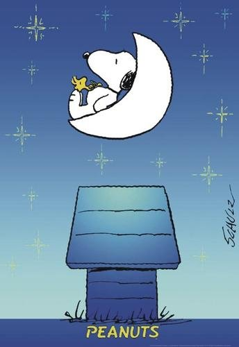 Peanuts Poster Snoopy & Woodstock, 69x99 cm