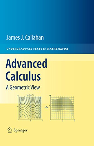 Advanced calculus a geometric view undergraduate texts in advanced calculus a geometric view undergraduate texts in mathematics by callahan fandeluxe Gallery