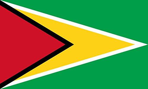 sch-Fahne/Tisch-Flagge: Guyana 15x25cm inkl. Tisch-Ständer ()