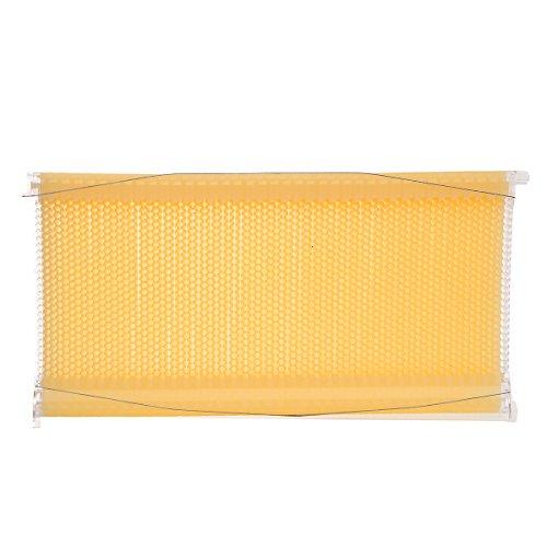 Janolia Beehive Rahmen Kit, 1Stück Auto Flow Kamm Kit Mit Glas Tube Automatische Flow von Honig Flow Honig Bienenstock Bienenzucht mit Ernte Röhren Lebensmittelqualität