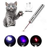 Angel's Pride LED Pointer für Katzen/Spielzeug Haustier Katze/interaktives Spielzeug/mit USB Kabel