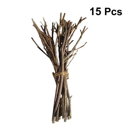 Holibanna ramas abedul ramitas abedul naturales centros
