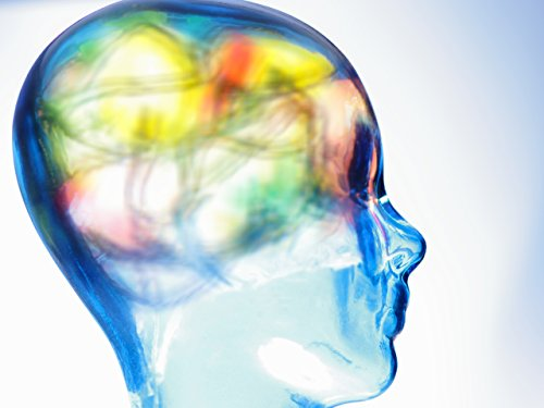 Einführung: Wie die Psychologie unser Leben bestimmt