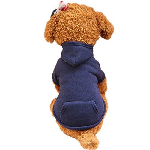 Balock Schuhe Haustier Pullover,Haustier-Kleidung Herbst-Winter-Strickjacke, Reizendes mit Kapuze Jacke-Haustier-Kostüm,für Das Wandern,Das Joggen,für Kleinen Hund (Navy, L)