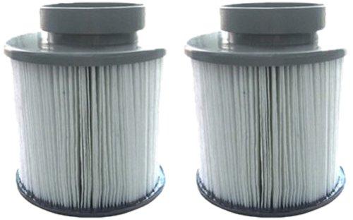 Miweba MSpa Filterkartusche Filter 2 x Whirlpool Wasserfilter B0301964 für aufblasbaren Whirlpool Zubehör Outdoor Pool Spa (Whirlpool-wasser-filter 2)