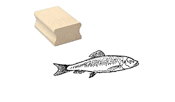 Stempel Holzstempel Motivstempel /« KARPFEN /» Scrapbooking Embossing Kinderstempel Tierstempel Carp Fischen Angeln Angler Angel Fischer