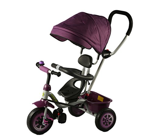 Baybee Duster Tricycle with Cycle with Canopy (Black)