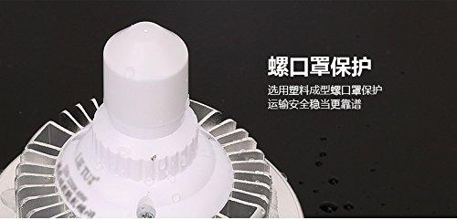 Professionelle Fotografie LED E27Leuchtmittel (65W, 5.500K), flimmerfrei, Softbox, für Foto Studio und Online Celebrity, für Portrait und Artikel zu Beleuchtung - 8