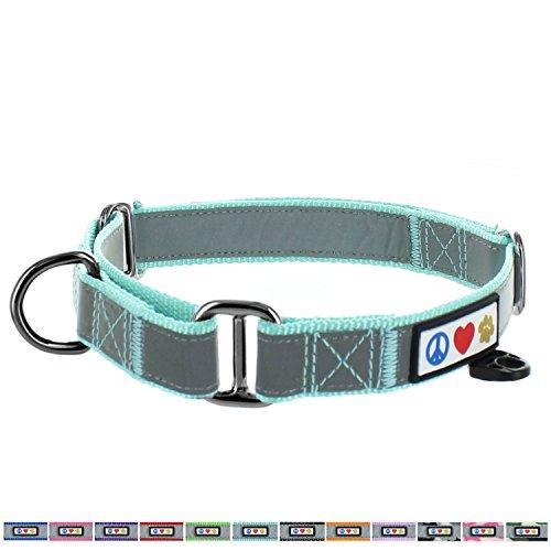 PAWTITAS Reflektierende Hundehalsband Martingal Hundehalsband Mittel Türkis