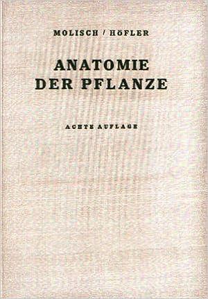 Anatomie der Pflanze: Amazon.de: Hans Molisch, Karl Höfler: Bücher