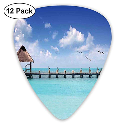 Celluloid Guitar Picks - 12 Pack,Abstract Art Colorful Designs,Seascape Clouds Sky With Birds Wooden Dock Lonely Bungalow Tropical Picture,For Bass Electric & Acoustic Guitars. -