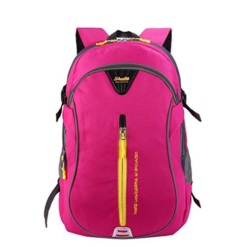 Baymate City Laptop Rucksack Schule Arbeit & Freizeit Bag Schulrucksack Sportrucksack Backpack Laptopfach Pink