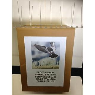 Bird Pigeon Gull Spikes 1.2 Metres Professional Anti Spike Deterrent Defender System