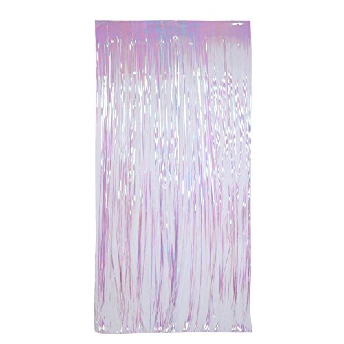 Zerodis Glitter Quaste Girlande Türvorhang für Hochzeit Geburtstag Party Foto Hängend Dekoration 1m*2m Band Tassel Fringe