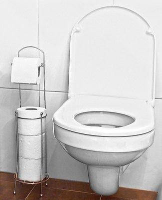 Vivo © Free Standing 4 Roll Bathroom Toilet Paper Tissue Dispenser Storage Holder Stand