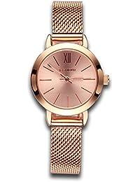Relojes para mujer Rose Golden Luxury Reloj de cuarzo informal Lady Simple Design Classic Fashion Business Vestido de pulsera para mujer con malla pequeña Dial Aleación de acero Pulsera