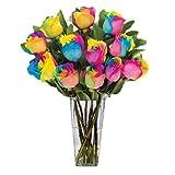 Regenbogen Rose/Einhornrose / Bunte Rose/ca. 50 Samen/Rosensamen / Geschenk für Verliebte/Geburtstagsgeschenk