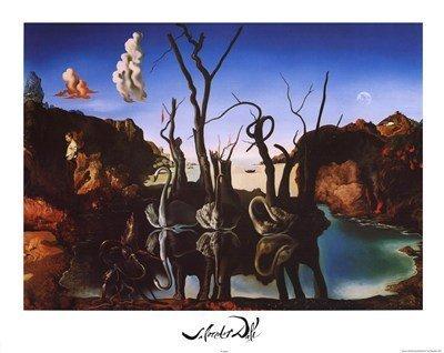 Salvador Dali Swans Reflecting Elephants White Border Art Print Poster Mini Poster Mini Poster Print, 20x16 by Poster Discount - Swans Reflecting Elephants Von Dali