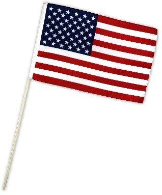 Fahne Flagge USA 30 x 45 cm mit Stab (Us-fußball-wm)