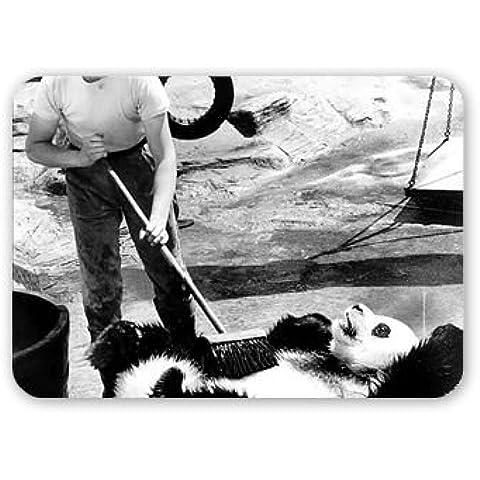 Chi de panda en zoológico de Londres alimenta a.. - Alfombrilla para ratón Art247 más alto de goma - Alfombrilla para ratón