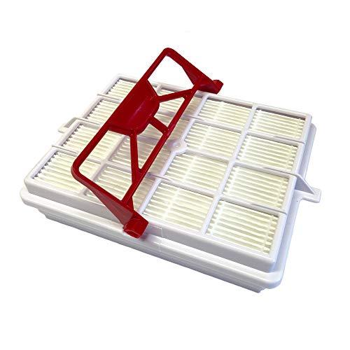 Swyp Hepa Carbon Filter weiß passend für Lux Electrolux Intelligence Royal Staubsauger Langzeitfilter
