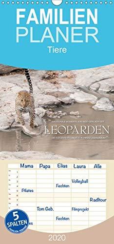 Emotionale Momente: Leoparden - Familienplaner hoch (Wandkalender 2020 , 21 cm x 45 cm, hoch): Leoparden - elegante Raubkatzen in ihrem Lebensraum. (Monatskalender, 14 Seiten ) (CALVENDO Tiere)