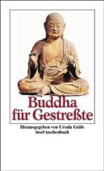 Buddha für Gestreßte (insel taschenbuch)