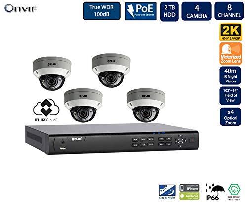Flir Digimerge IP Security Kamera Sytem mit Dnr400P Serie 2 Festplatteneinschübe Nvr und Quad-HD-Motor 4 Mp (2K) Vandal-Resistant-Dome-Kamera (4-Dome-Kameras mit 8-Kanal 2Tb NVR) - Lorex-security-kamera